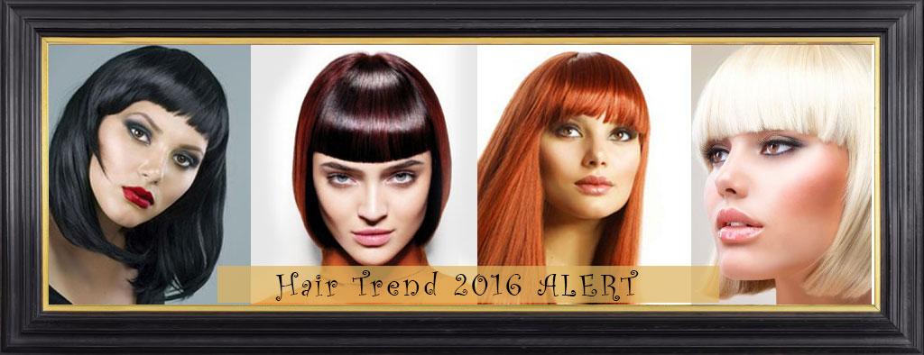 Hair-Trend-2016-ALERT